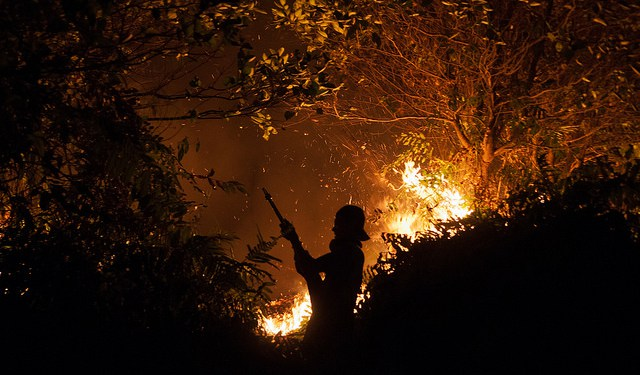 Firefighters fight fire at night. Outside Palangka Raya, Central Kalimantan. Photo by Aulia Erlangga/ CIFOR