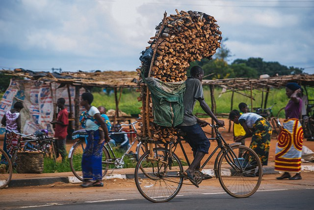 Man transporting firewood along the 50km road to Lilongwe, Malawi. IFPRI / Mitchell Maher.